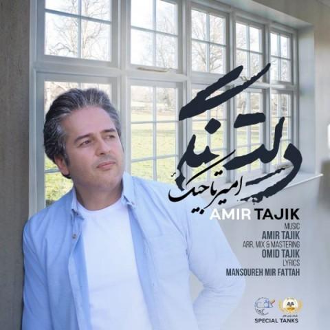 دانلود آهنگ جدید امیر تاجیکدلتنگی