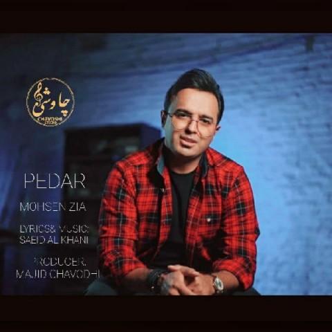 دانلود آهنگ جدید محسن ضیاپدر