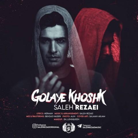 دانلود آهنگ جدید صالح رضاییگلای خشک