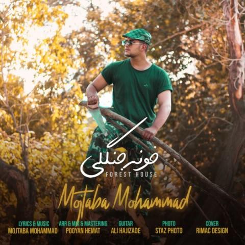 دانلود آهنگ جدید مجتبی محمدخونه جنگلی